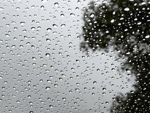 Ambiente fresco a cálido y precipitaciones leves