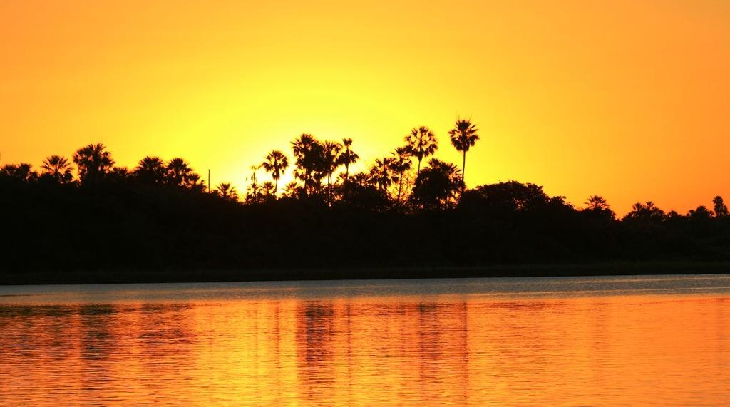 Pantanal paraguayo camino a ser declarado patrimonio natural de la Unesco