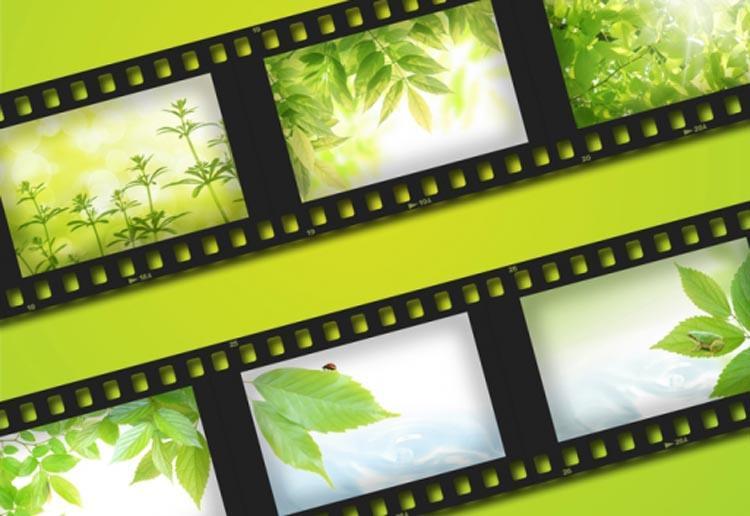 Festival Internacional de Cine Ambiental y DD.HH