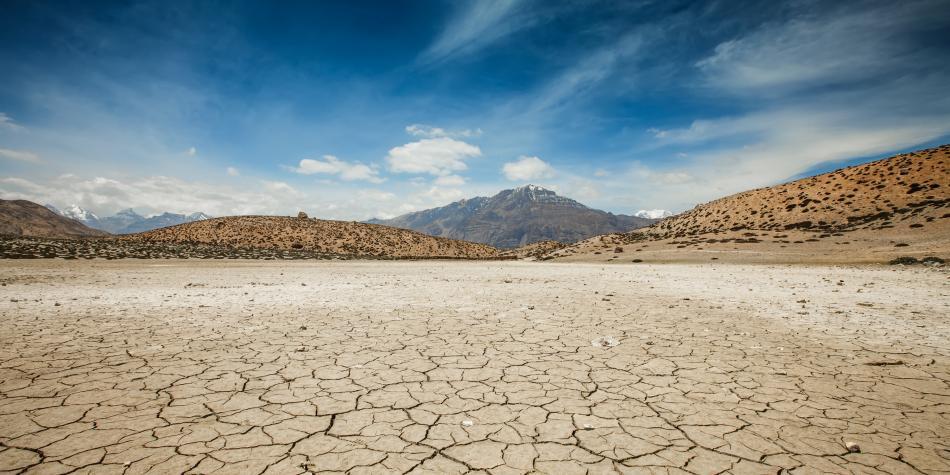 Científicos encuentran soluciones naturales contra el cambio climático
