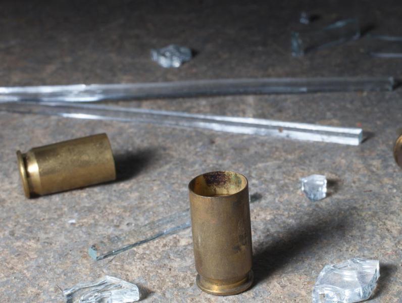 vainilla servida casquillo disparo de arma de fuego ilustrativa INTERNET 006