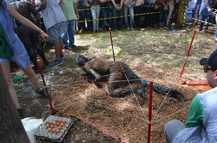 """¡Una vez más! Violento bautismo de """"bichos"""" en Caazapá"""