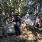 allanamiento campamento narco marihuana fredy irala licoi capitan bado GENT 04