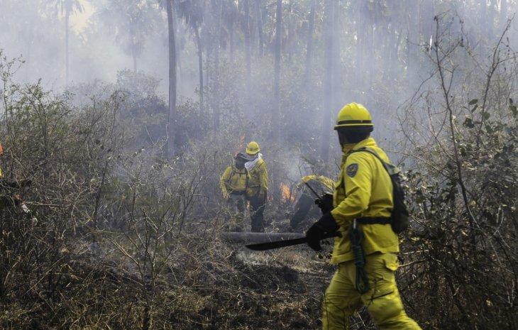 Nuevos focos de incendio se detectaron en la reserva Tres Gigantes UH