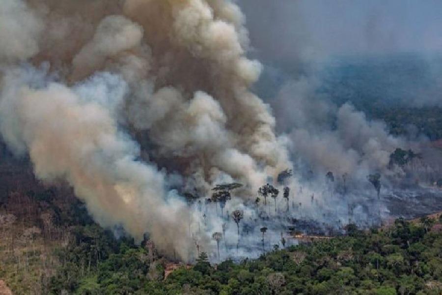 incendios forestales amazonas tapabocas