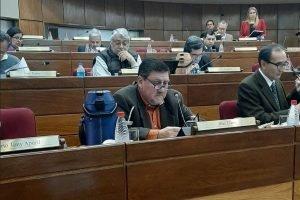 Blas Llano senador PLRA congreso SENADO