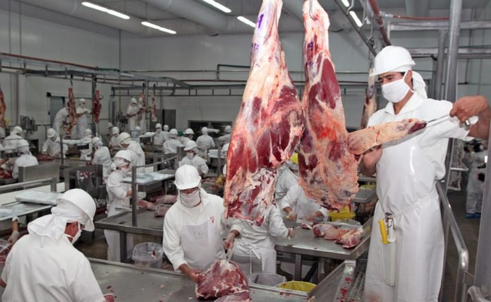 FRIGORIFICO CARNE AGRICULTURA VACUNO CORTES