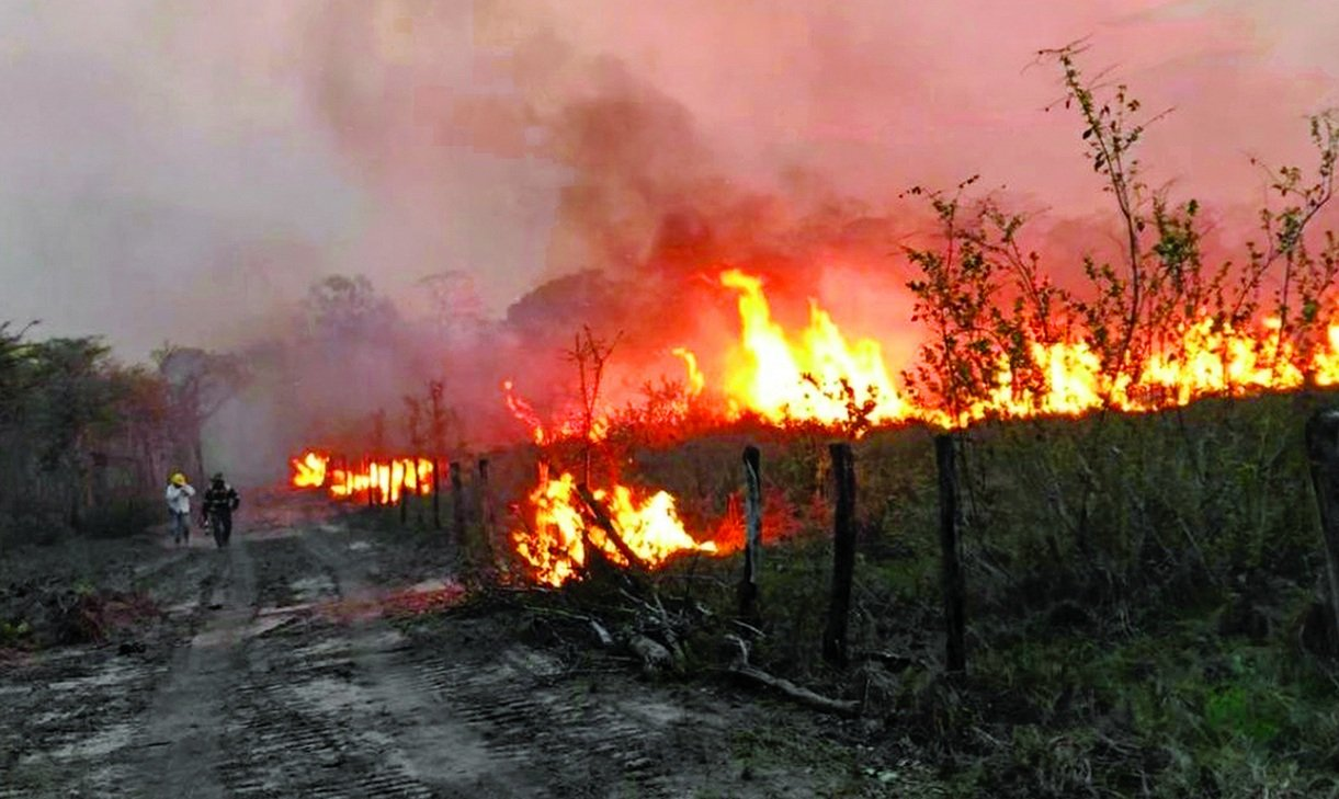 incendios forestales en Bolivia bosques eldeber.bo WEB