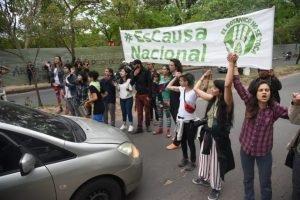 Heridos y detenidos en incidentes por tala de arboles en el Jardin Botanico DIARIO UH