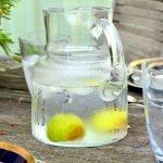agua saborizada naturalathlete COM
