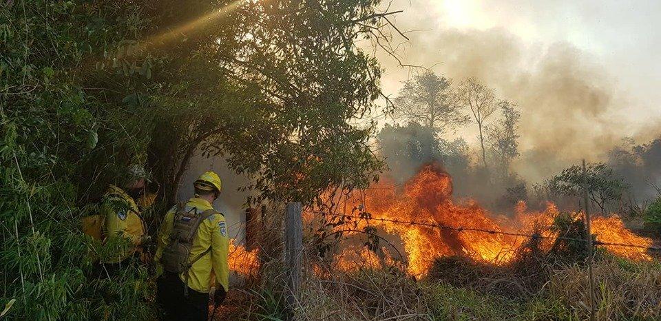incendios forestales bomberos FB CBVP