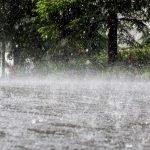 precipitaciones lluvia clima ambiente ILUST RTVE