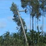 postes de luz ande cables sueltos cadenadelsuritapua 03