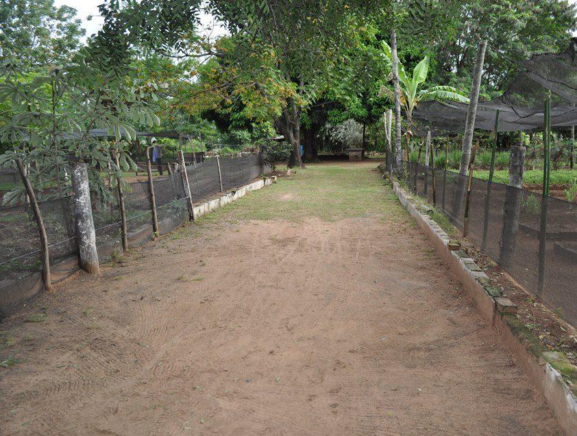 granja penitenciaria Ko'e Pyahu